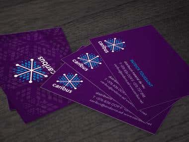 Logo and business card design for Caribus