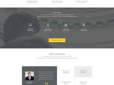 Software Company Website in PHP