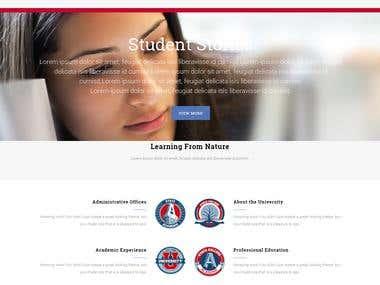 Wordpress| website|