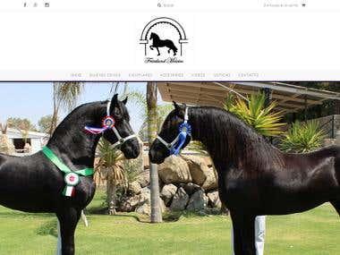Web de caballos