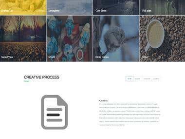Portfolio theme Design