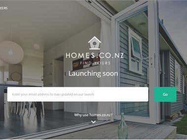 Site for Developer  - www.homes.co.nz