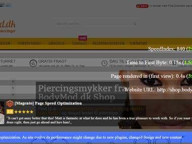 [Magento] Page Speed Optimization