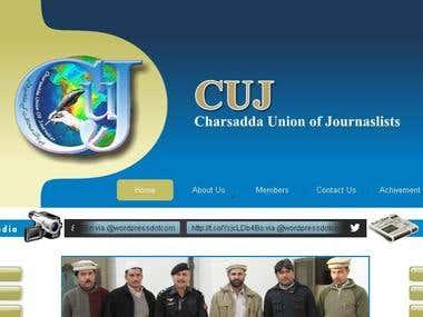 Website Design for CUJ News