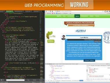 WORKING ON WEB PROGRAMMING