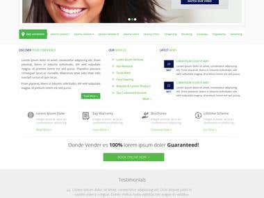 Website Mockup for Zap