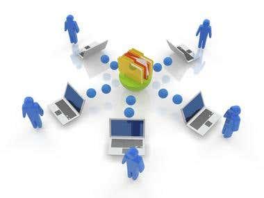 Content Management System (CMS).