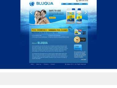 Website Design & Development - Bluqua