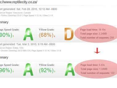reptilecity.co.za - Google Website Optimizer