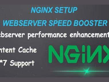Nginx setup