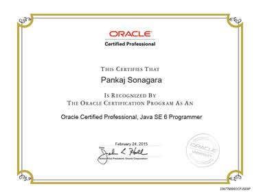 Oracle Certified Java Developer