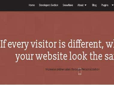 Eng-Por Translation - Marketing Website - Targeting Mantra