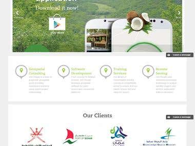 NorthSystem website