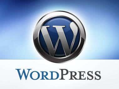 WordPress, Web Development, Web Designing and SEO.