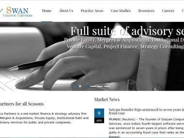 Financial Consulting WordPress Static Website