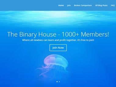 WordPress website by Divi theme