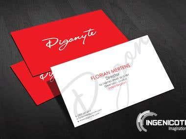 Digonyte Systems
