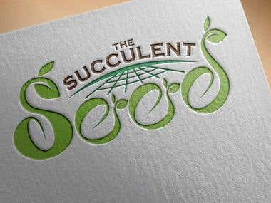 The Succulent Seeds