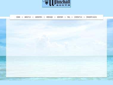 Whitehall south website design