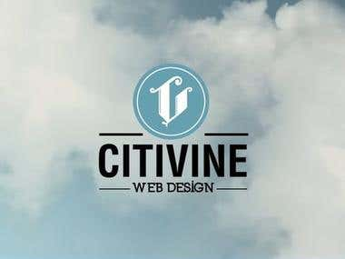 Virtual Assistant  in  CITYVINE WEB DEVELOPMENT COMPANY.