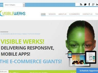 Development and Design of Visible Werks Inc Website