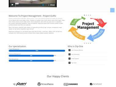 Project Management Systems (Custom PHP Site)