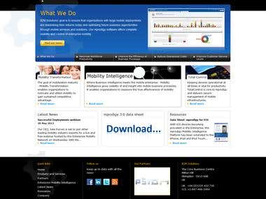 B2M Solutions Website Project