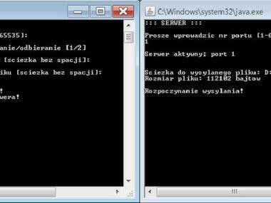 UDP Client-Server Communication
