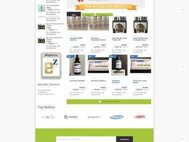 Magento Onlineshop with responsive Design