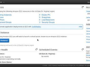 Setup a t2.micro Instance at Amazon AWS EC2 Cloud