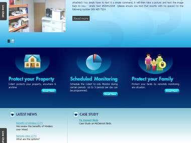 Wordpress Wp E-commerce website