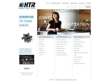 Website Design (Fully responsive)