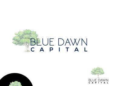 Blue Dawn Capital
