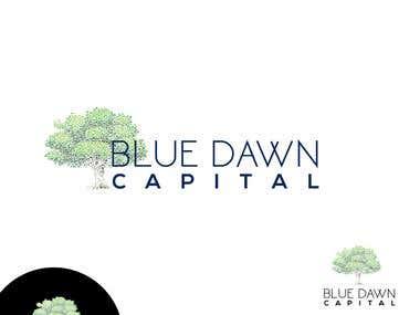 Blue Dawn Capital