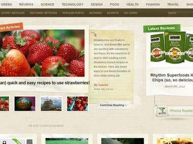 Ecoki Website (Wordpress)