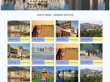 Its a Travel Website developed in Wordpress.
