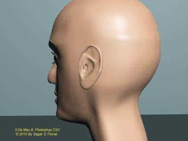 3-D Head modeling