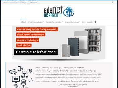 Strona internetowa · Firma z branży IT