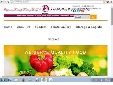 Website  for Export Import Business