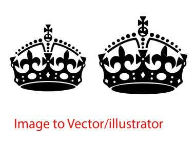 Image to Vector /illustrator