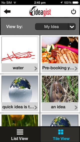 Ideagist iphone app