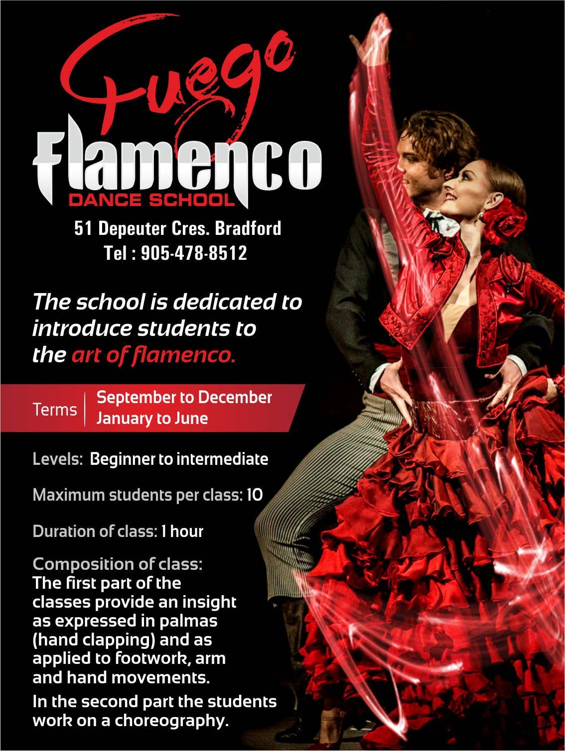 Feago Flamenco Dance School