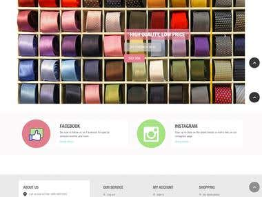 Web Development a Magento website