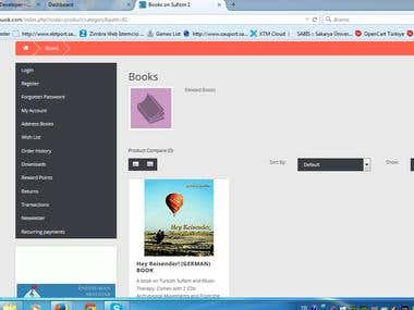 Web Site A