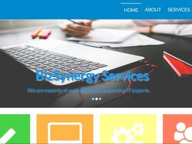 Bizsynergy website