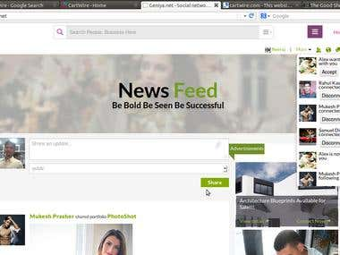 Geniya.net - A professional/social networking website