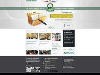 Template Prodem Website