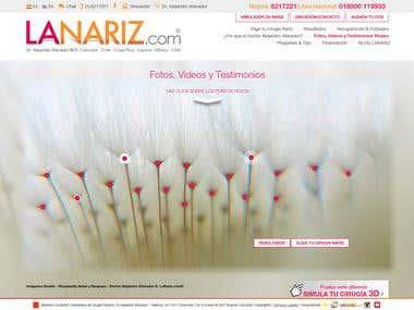 Diseño Web/Web Design Responsive www.lanariz.com
