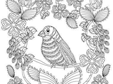 Adult Colouring book Illustration