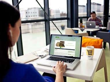 Web Design Wordpress  - e-commerce